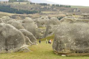 Nueva zelanda 9 - Tour Idiomas