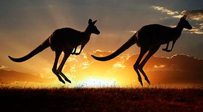 Visita Australia con Tour Idiomas