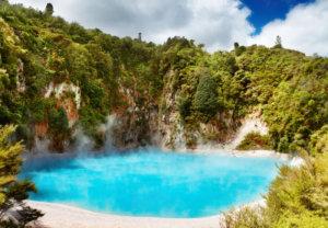 Nueva zelanda 20 - Tour Idiomas