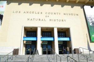 Los Ángeles 2 - Tour Idiomas